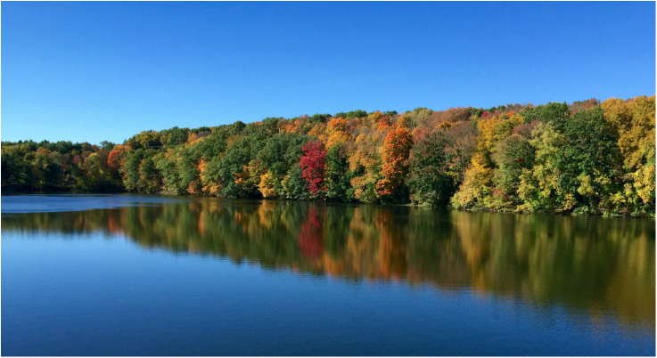 Autumn on the Amawalk Reservoir by Michael Ferrara