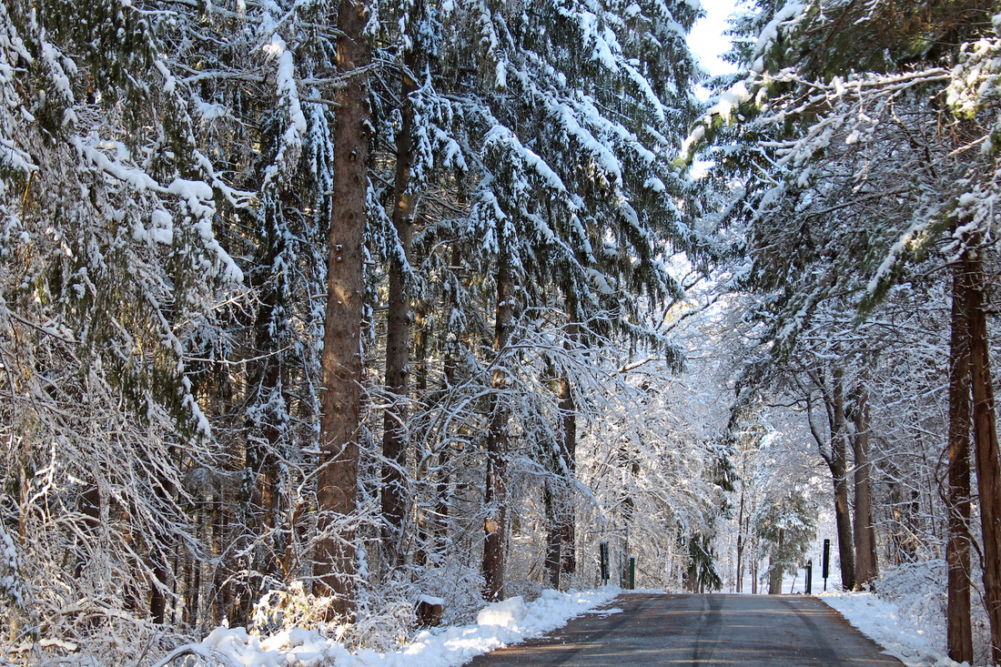 Snowy Road on the way to Sojourner Truth Park, Kingston, New York