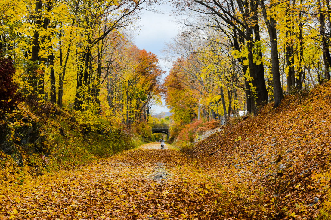 Autumn on the Dutchess County Rail Trail